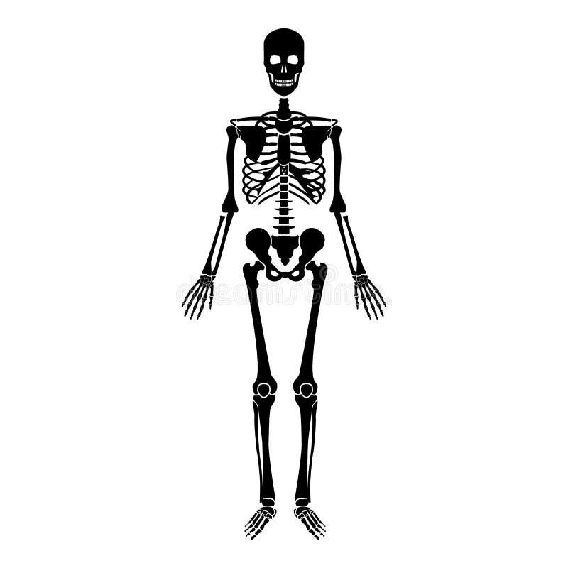 人的最基本的象黑色彩色插图平的样式简单的图象 库存例证