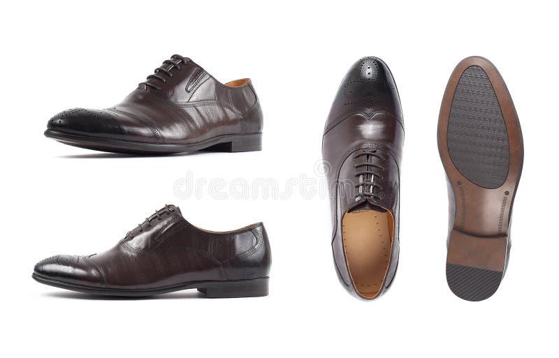 人的棕色鞋子,鞋子隔绝了白色背景 侧视图、顶视图和脚底 免版税库存照片