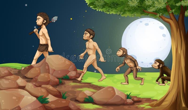 人的演变在小山顶 向量例证