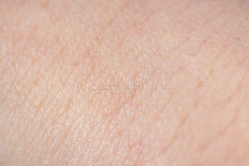 人的皮肤纹理,关闭,选择聚焦 免版税库存图片