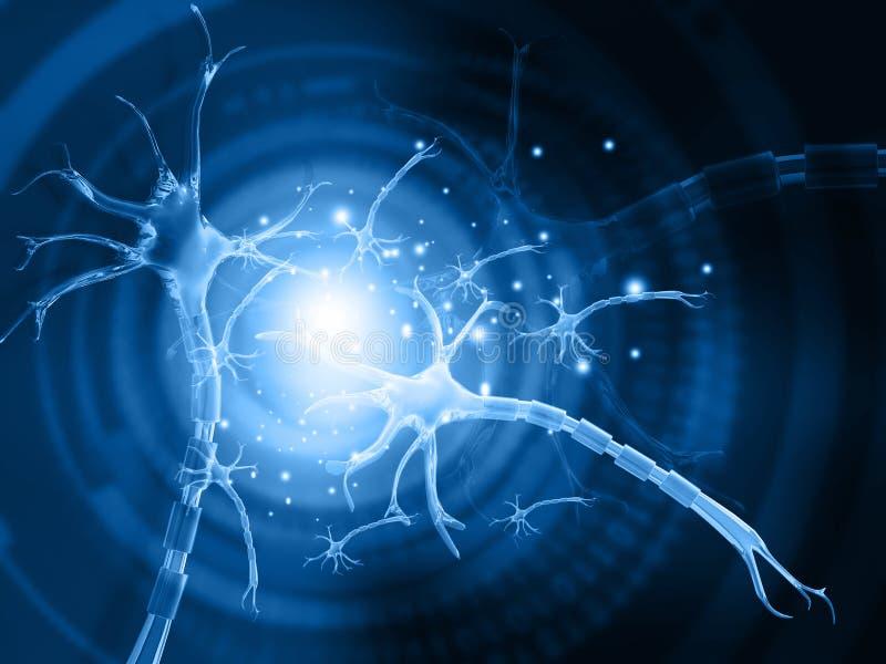 人的神经元 皇族释放例证