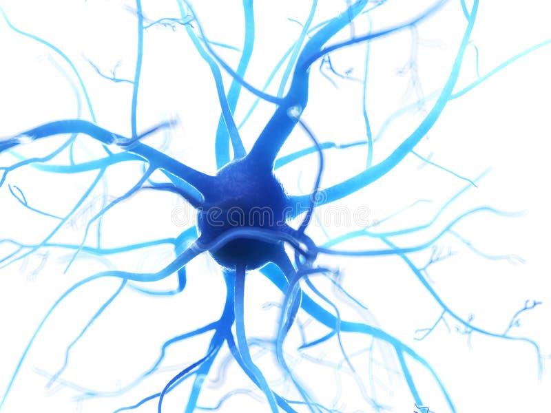 人的神经细胞 向量例证