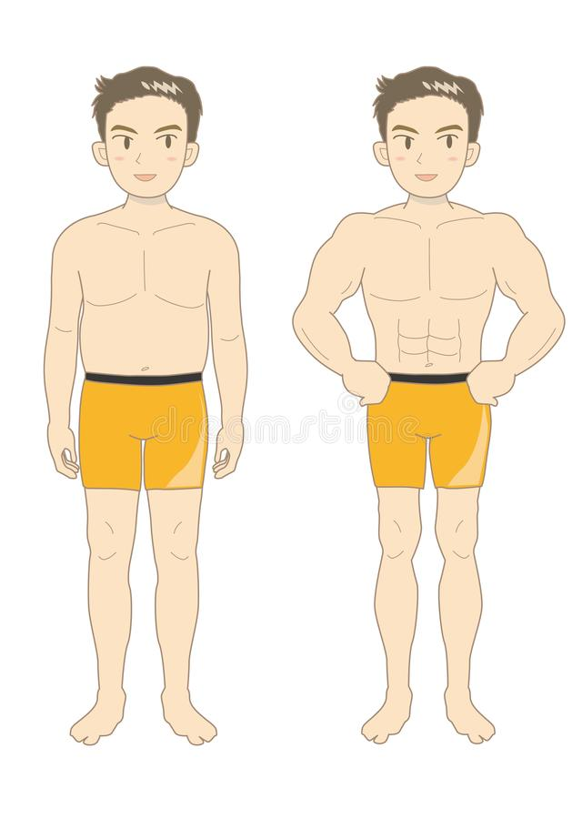 人的秀丽肌肉身体青年时期 向量例证