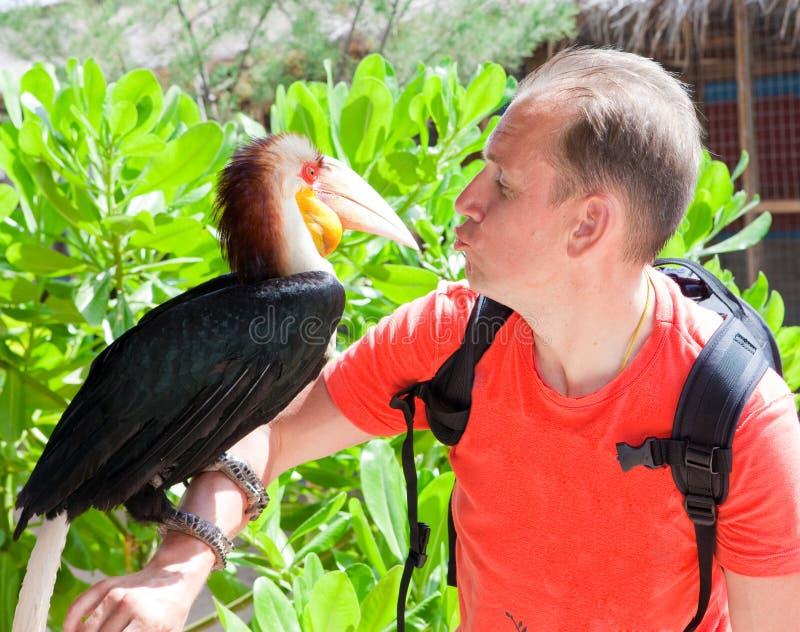 人的纵向有toucan的 库存图片