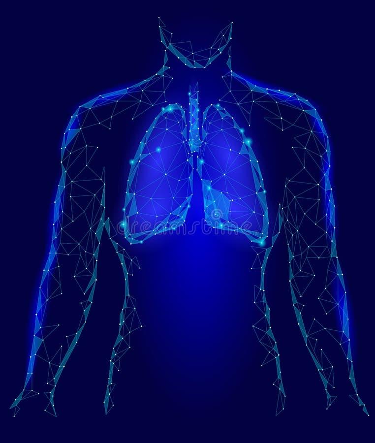 人的肺内脏 在身体剪影里面的呼吸系统 低多3d连接了小点三角多角形设计 蓝色 皇族释放例证