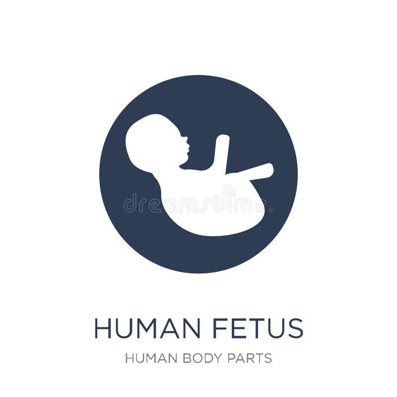 人的胎儿象 时髦平的在白色b的传染媒介人的胎儿象 库存例证