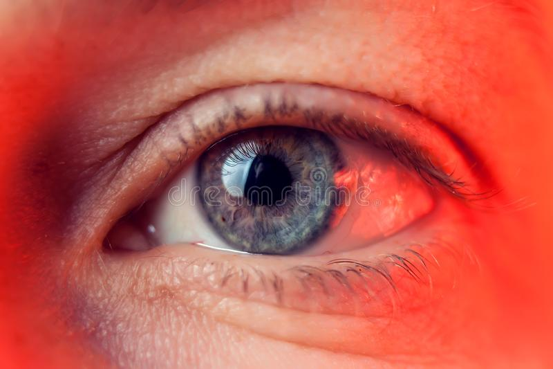 人的蓝眼睛,特写镜头细节的宏观图象 免版税图库摄影