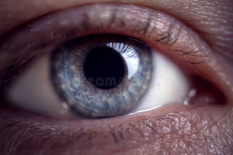 人的蓝眼睛,特写镜头细节的宏观图象 库存照片