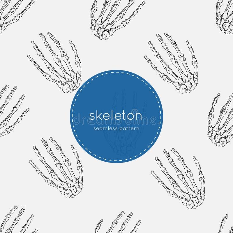人的骨骼,无缝的样式传染媒介 库存例证