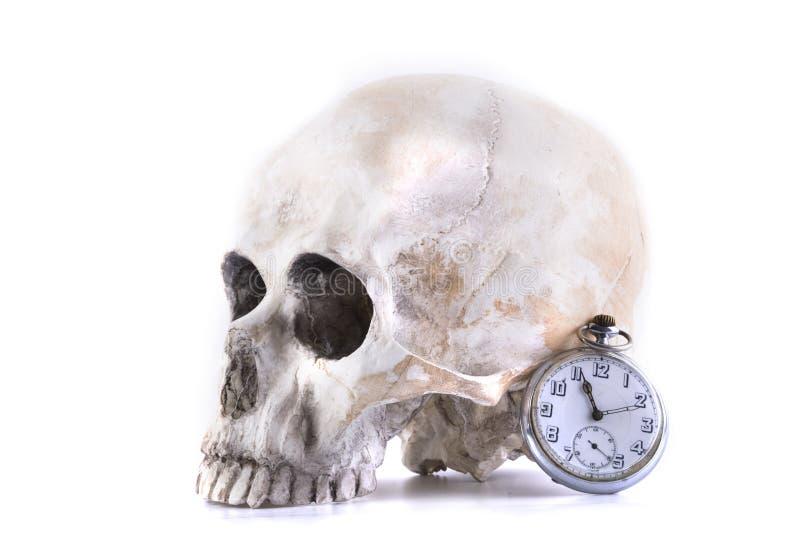 人的头骨和手表 免版税库存图片