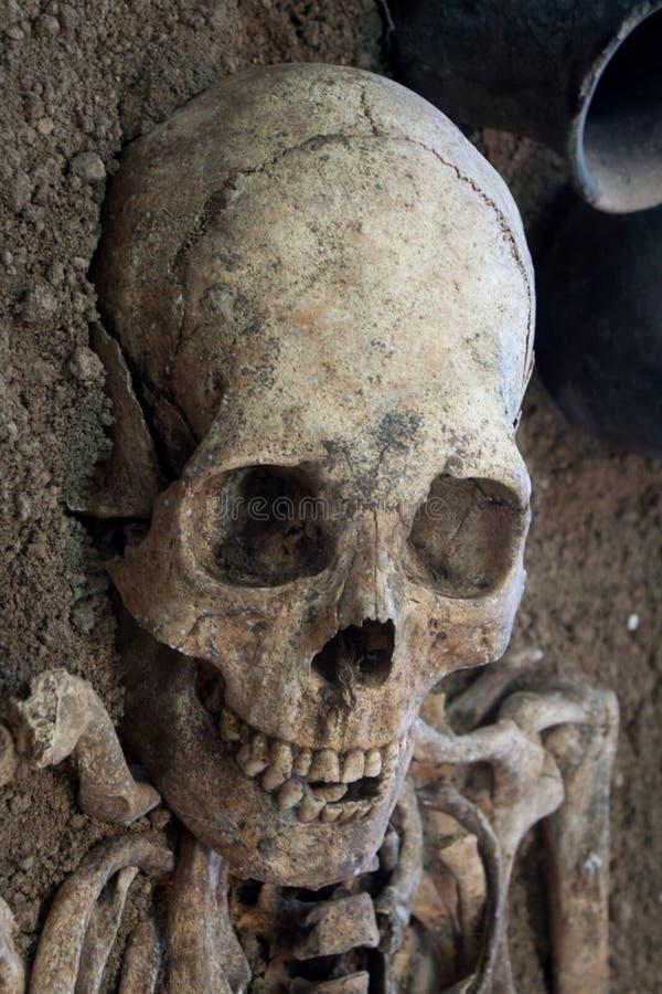 人的头骨有黑暗的背景 死亡、恐怖和解剖学的概念 鬼的万圣夜标志 图库摄影
