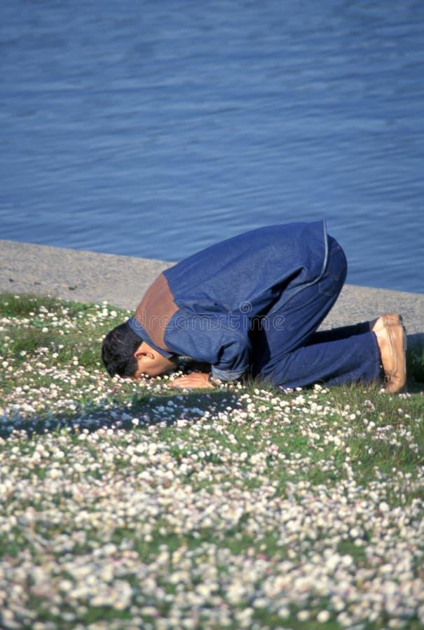 人穆斯林 免版税图库摄影