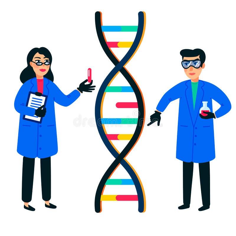 人类基因组研究 科学家与脱氧核糖核酸螺旋、染色体或者基因结构一起使用 人类染色体项目 平的样式 向量例证