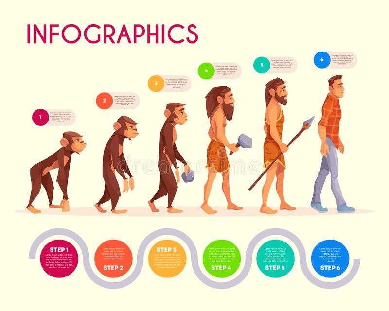 人类演变infographics那个时候变换 库存例证