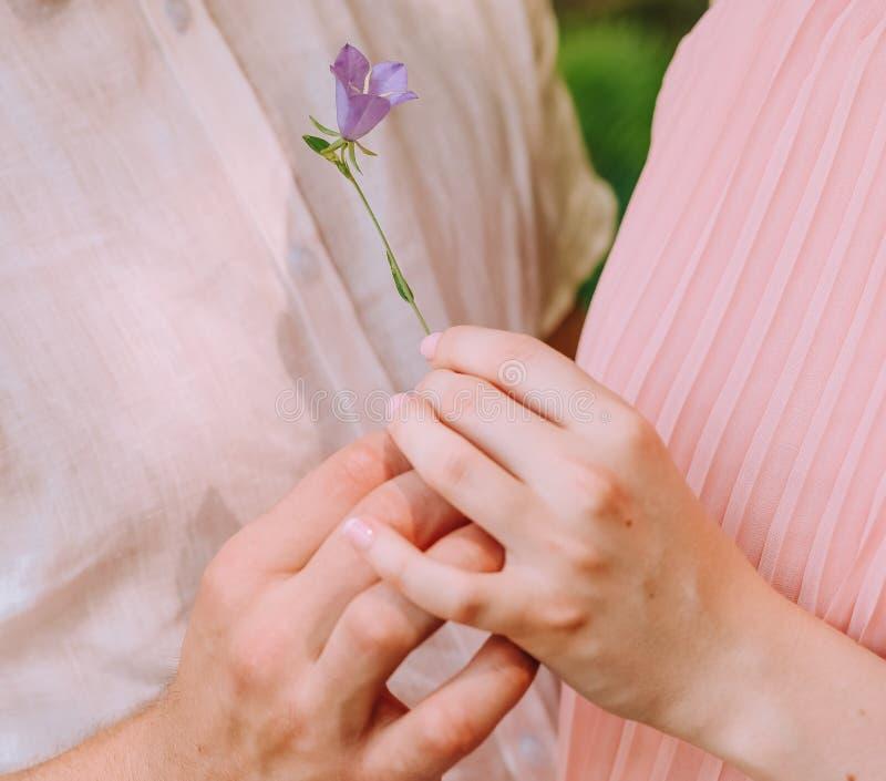 人给了女孩一朵小的花 免版税图库摄影