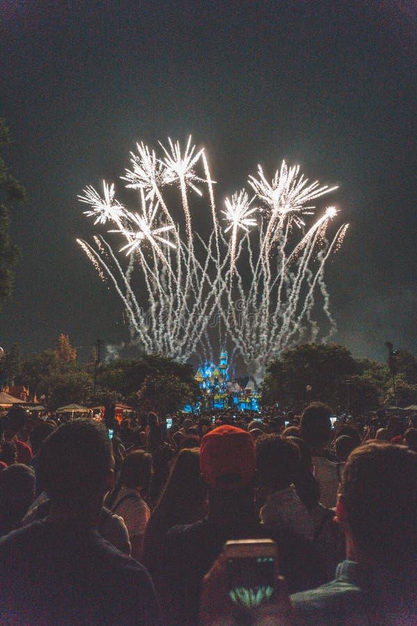 人群观看的令人惊讶的烟花在一个公园在晚上 图库摄影