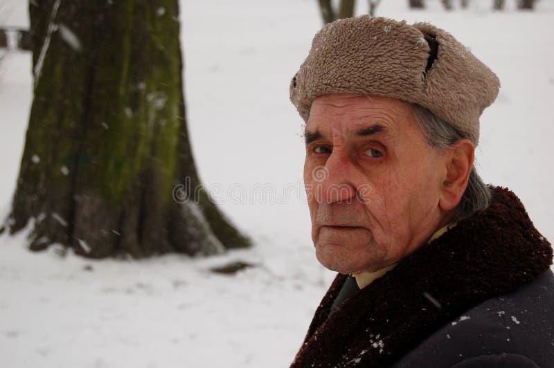 人老公园冬天 免版税图库摄影