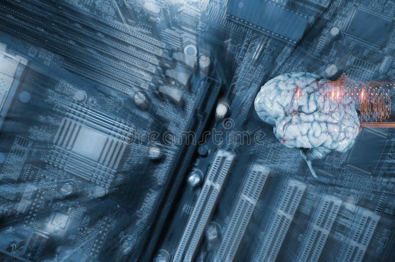 人脑、通信和智力 免版税库存照片