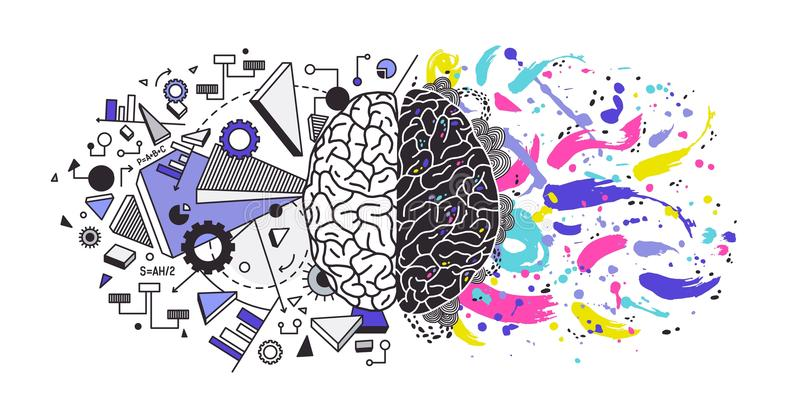 人脑划分了成正确和左大脑半球负责对不同的作用-创造性或艺术 皇族释放例证