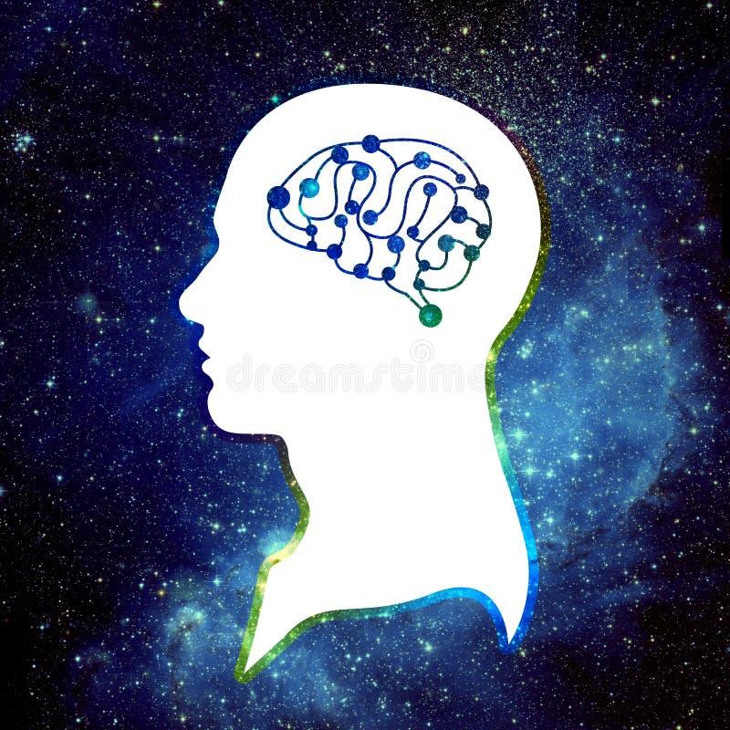 人脑和宇宙 库存图片