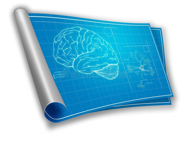人脑图纸 免版税库存照片