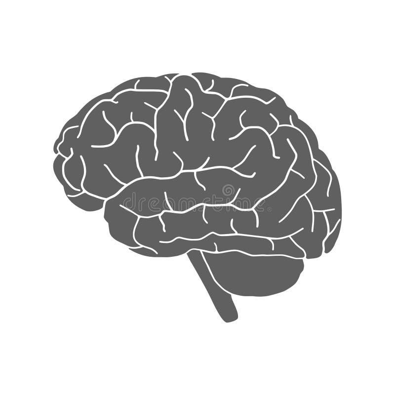 人脑灰色标志 向量例证