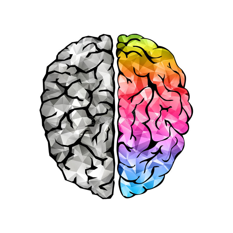 人脑的创造性的概念 库存例证