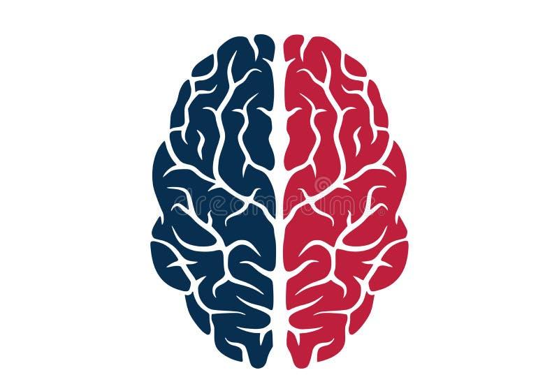 人脑象色的被隔绝的传染媒介图象 库存例证