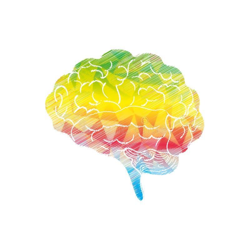 人脑头脑 向量例证