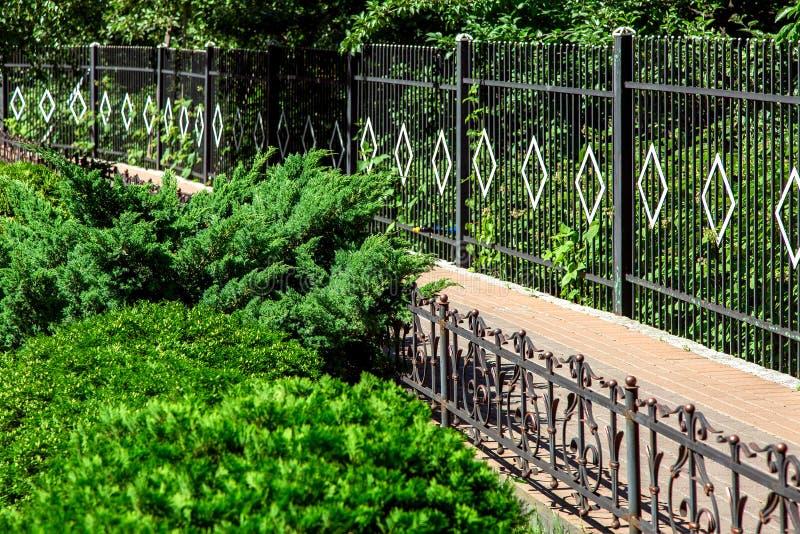 人行道操刀与有绿叶的铁篱芭 库存图片