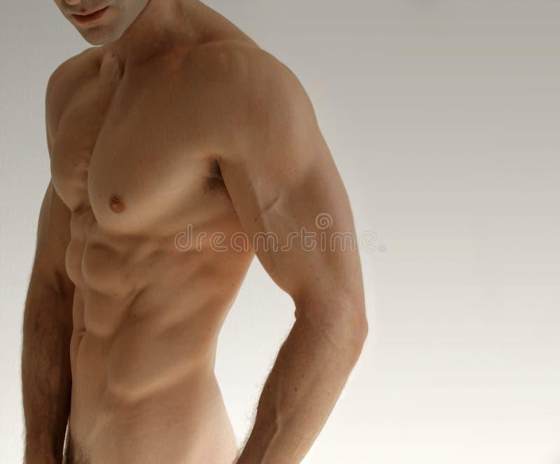 人裸体 图库摄影