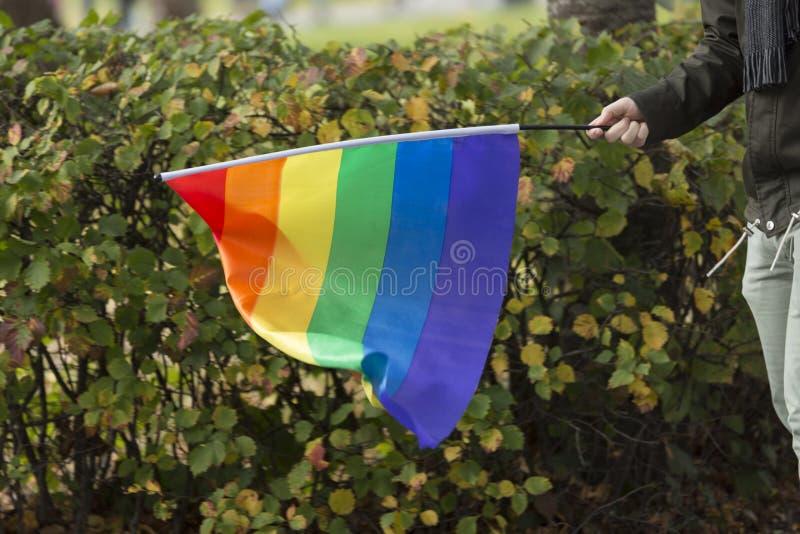 人运载的彩虹旗子 库存图片