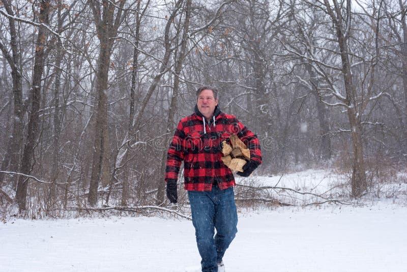 人运载的木柴在一多雪的天 图库摄影