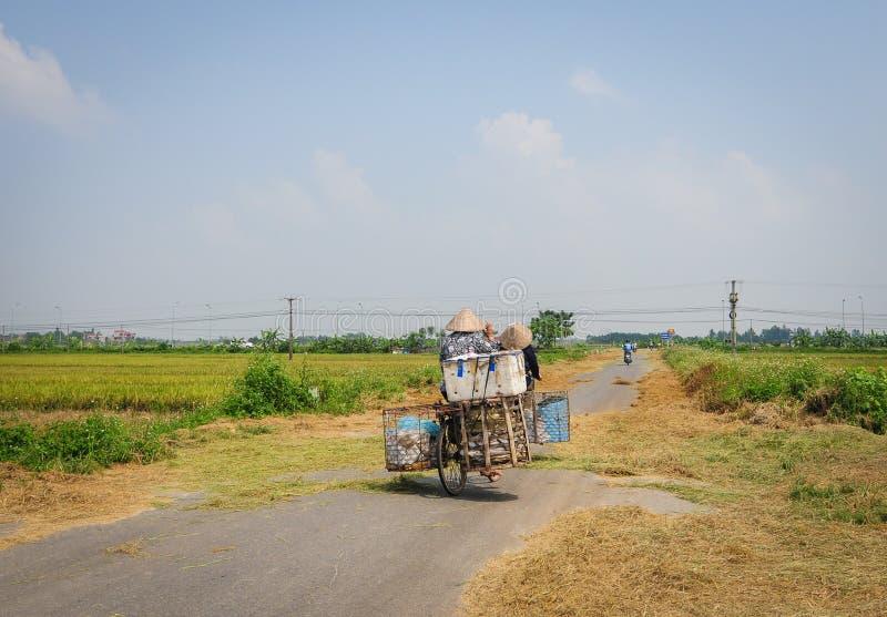人运载的物品乘在农村路的自行车有米领域的在Phu Tho,越南 库存照片