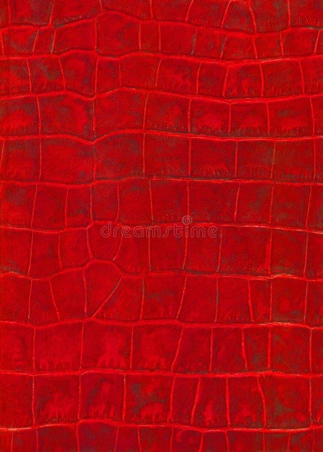 人造革红色爬行动物纹理 库存照片