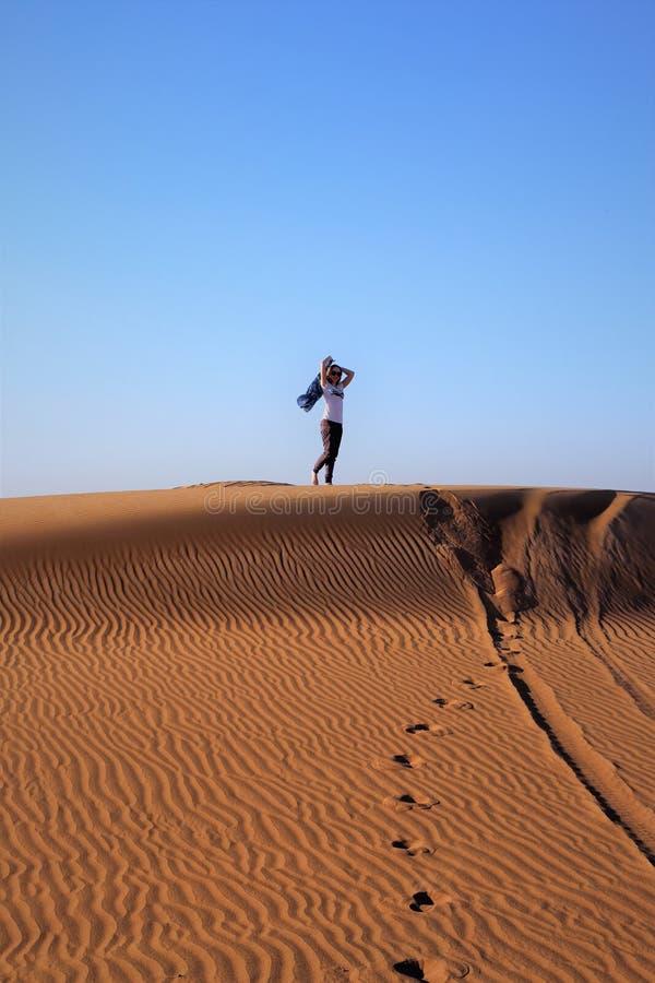 令人难忘的秀丽 沙漠 库存图片