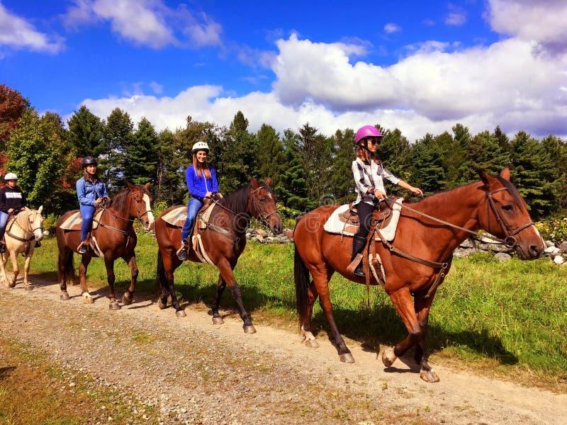 人骑乘马的专栏 免版税库存图片