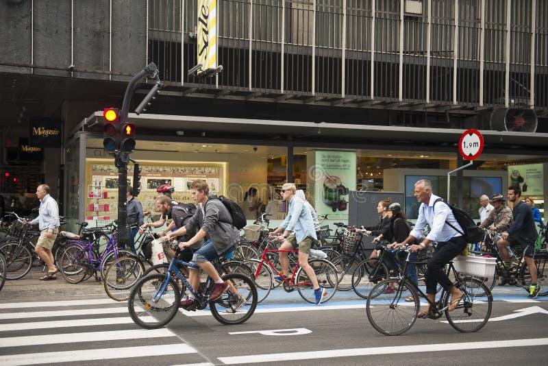 人骑自行车 免版税库存图片