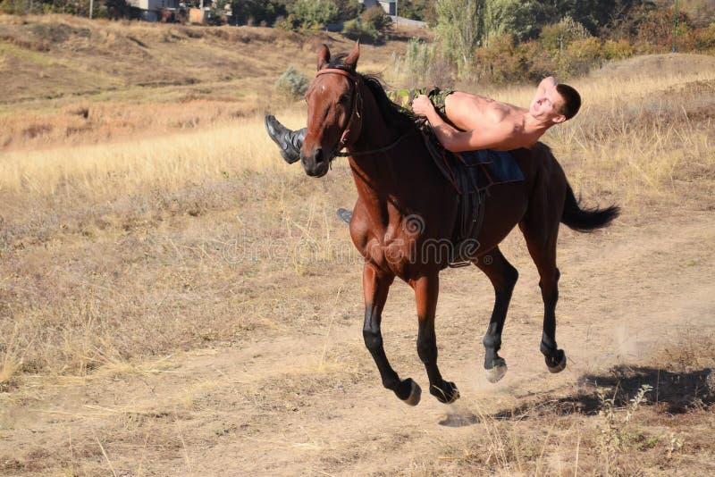 人骑马 免版税库存图片