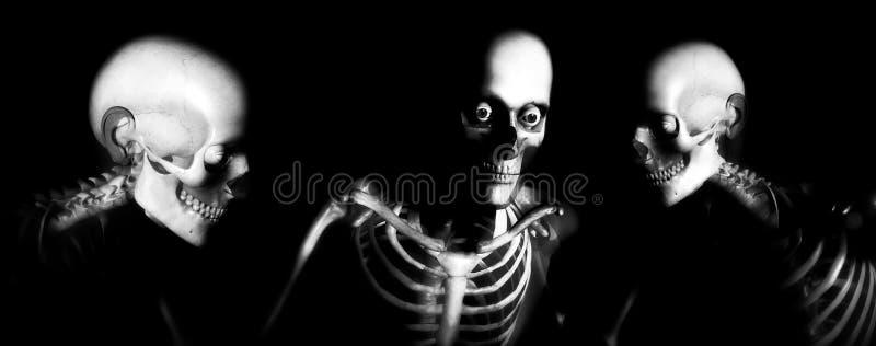 人骨头105 免版税图库摄影