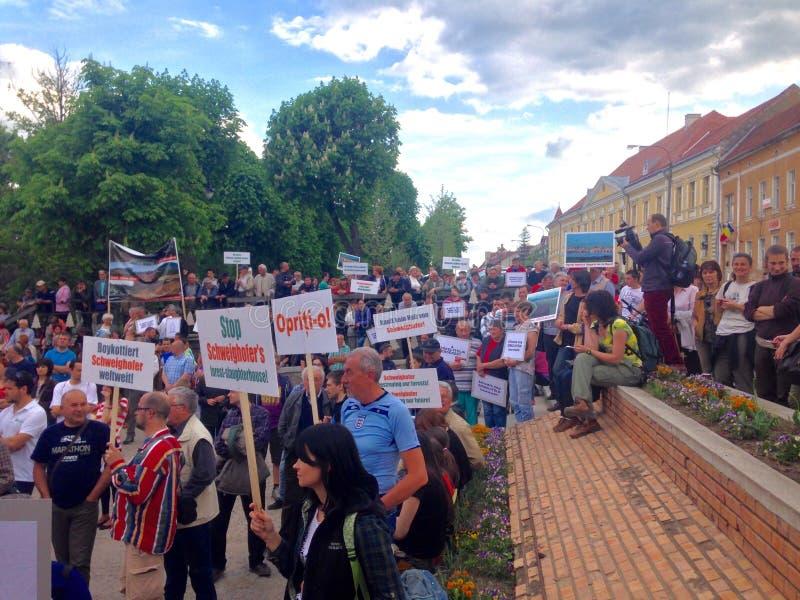 人们抗议反对虐待砍伐森林 免版税库存图片