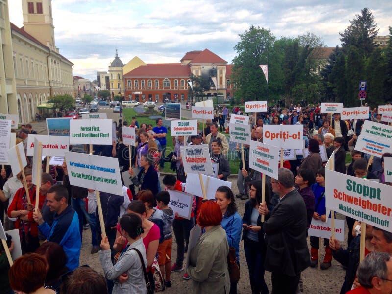 人们抗议反对虐待砍伐森林 免版税库存照片