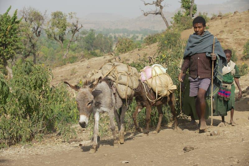 人们由乡下道路赤足走在巴赫达尔,埃塞俄比亚 免版税库存照片