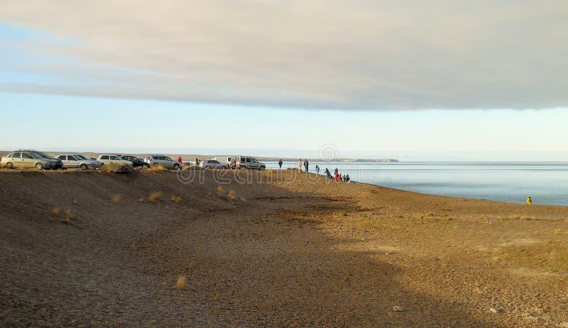 人们观看鲸鱼在El Doradillo海滩靠近马德林港海湾 免版税库存照片