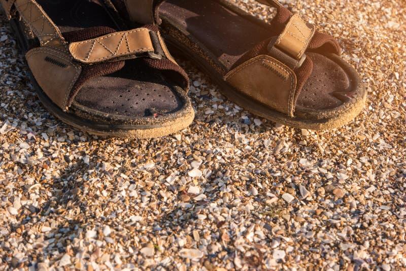 人` s褐色凉鞋 库存图片