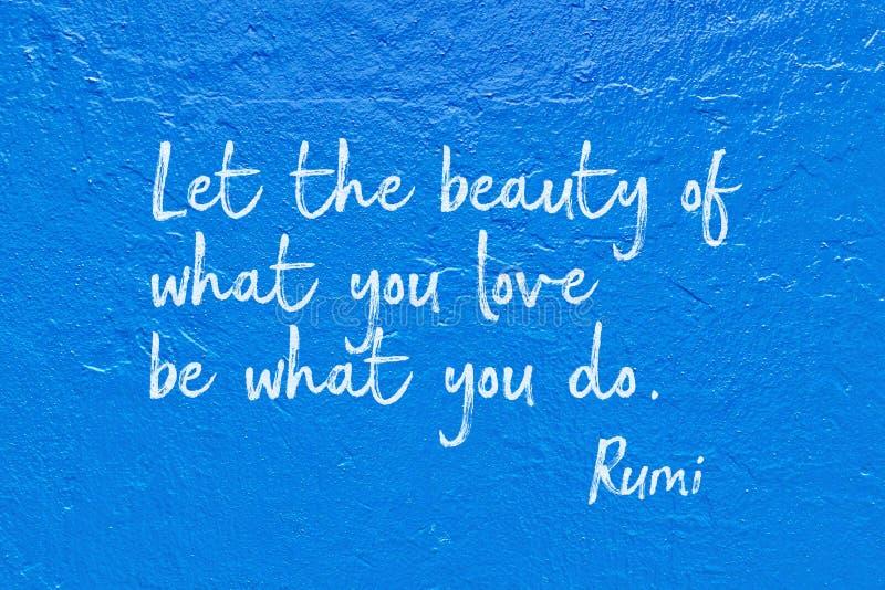 什么您做Rumi 免版税库存图片