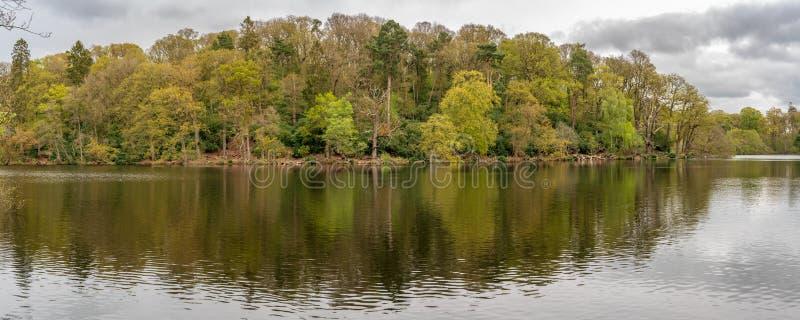 仅仅的布雷克,萨罗普郡,英国 库存照片