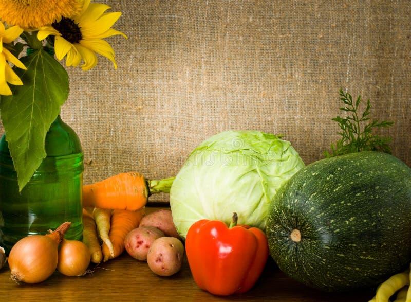 Download 仍然生活蔬菜 库存照片. 图片 包括有 蔬菜, 装饰, 红色, 农村, 圆白菜, 黄瓜, 大蒜, 土豆, 温暖 - 22358392