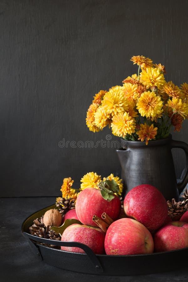 仍然秋天生活 秋天收获用苹果,在花瓶的黄色花在黑暗 免版税图库摄影