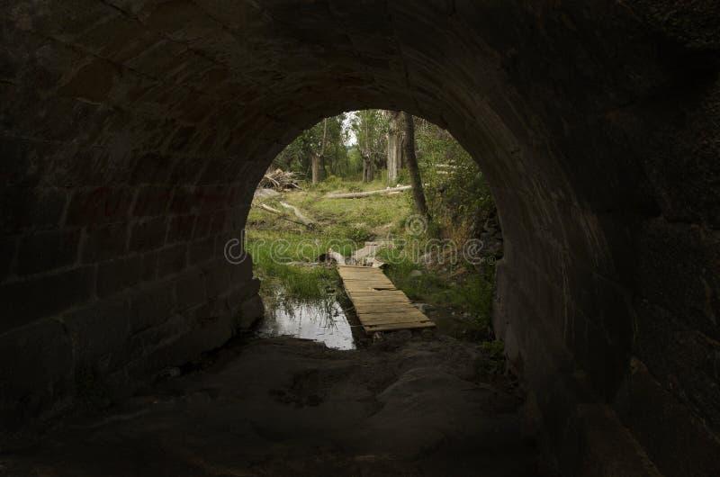 从一个隧道的出口往自然 免版税库存图片